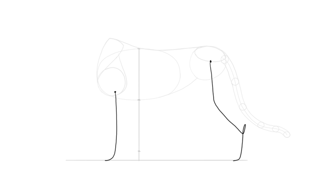 sketch rhythm of legs