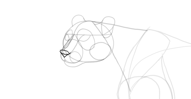 draw nose