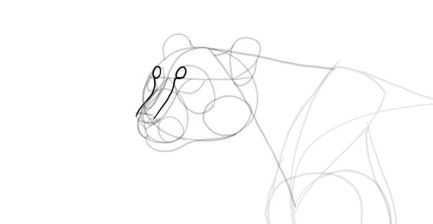 draw cat eyebrows