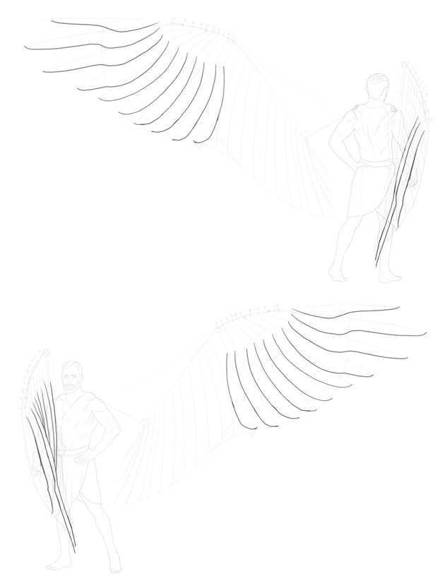 how to draw slotted feathers