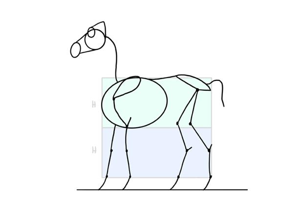 disney horse body proportions