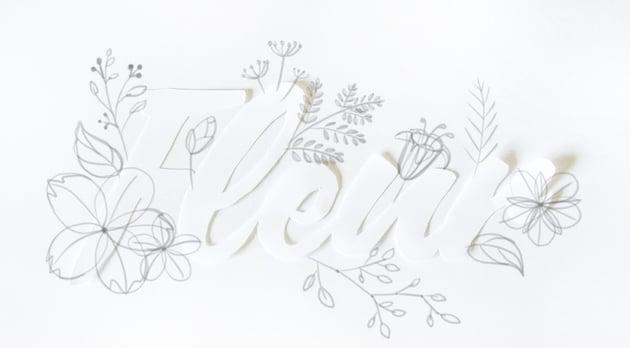 draw branching of fern leaf