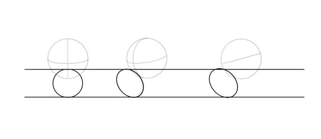 draw oval muzzle