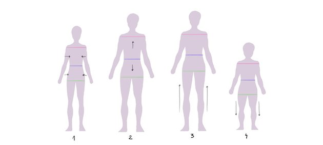 body shape variation