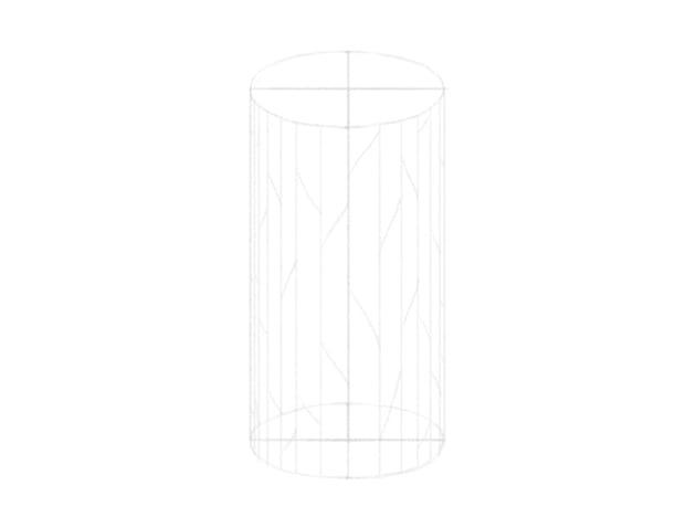 how to draw tree bark