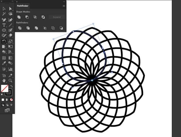 Duplicate Copy action petal degrees paste