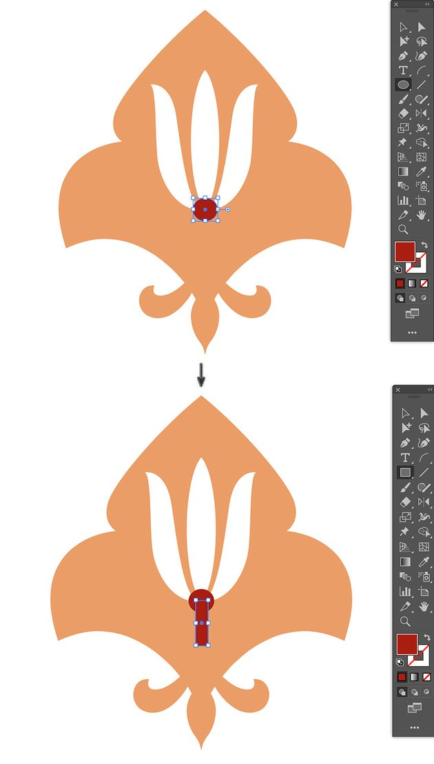 draw pistil and sepal flower parts using ellipse and rectangle tool