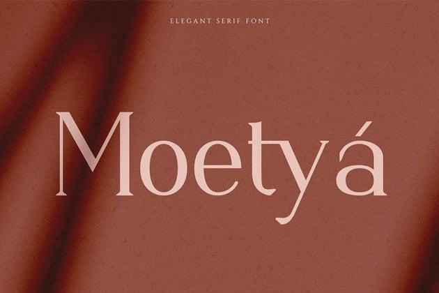 elegant serif font moetya similar to garamond modern feminine magazines logo luxurious layout