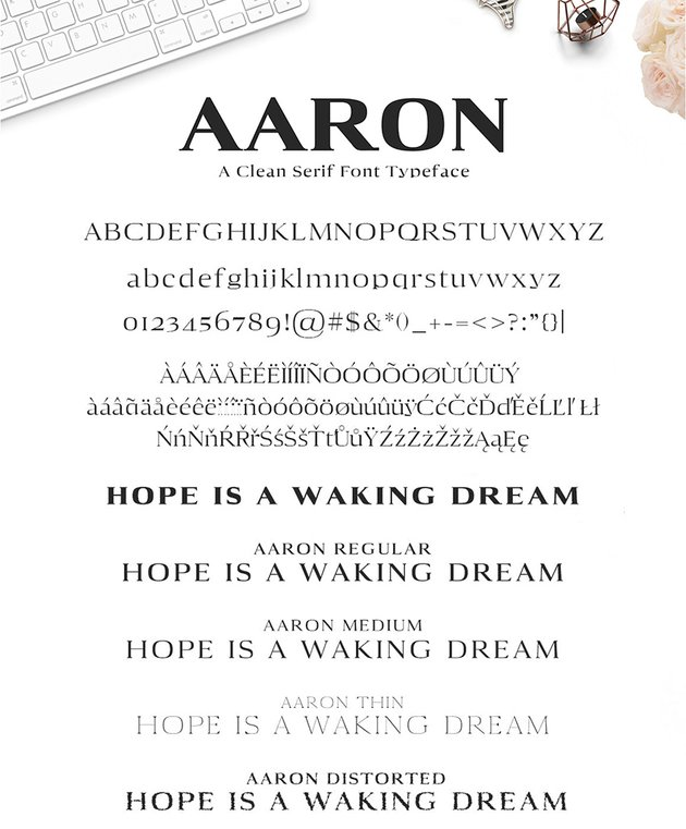 aaron serif font modern multilingual similar to copperplate
