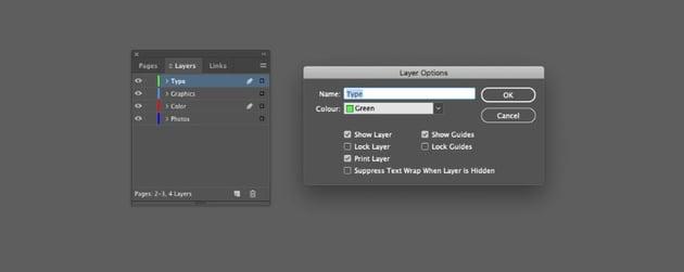 layer options type