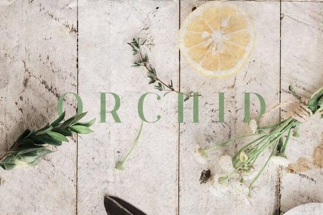 orchid font