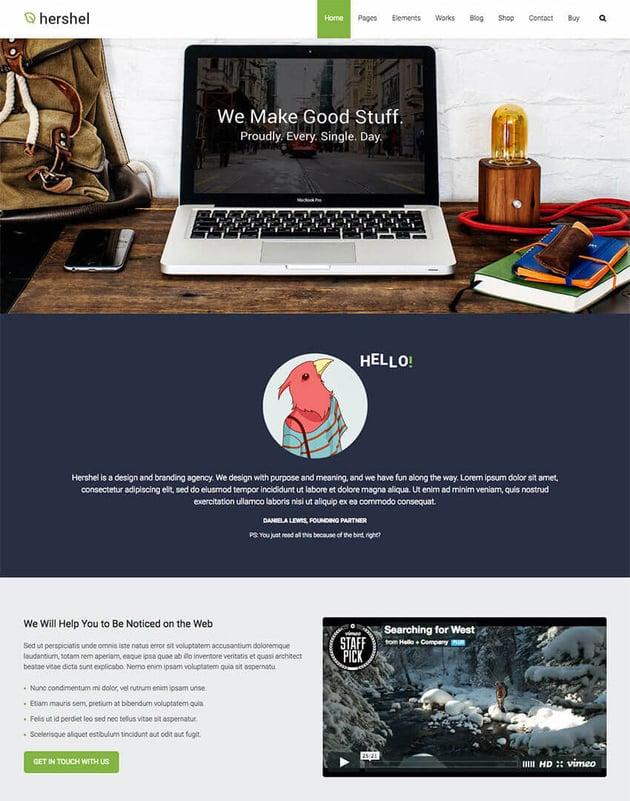 Hershel Multipurpose Video WordPress Theme