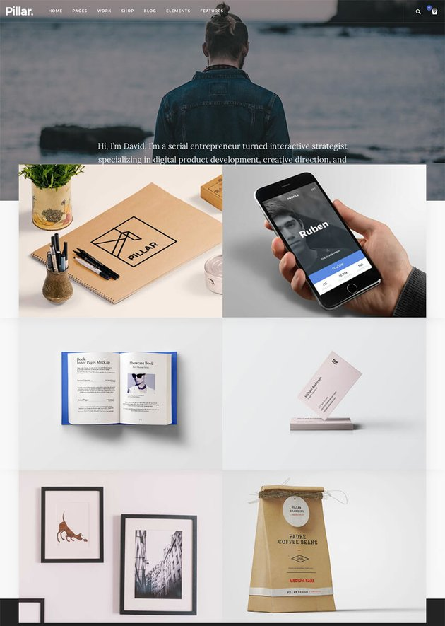 Pillar Personal Professional CV WordPress Theme