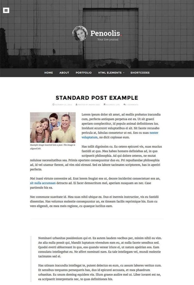 Penoolis WordPress Personal Blog Writer Theme