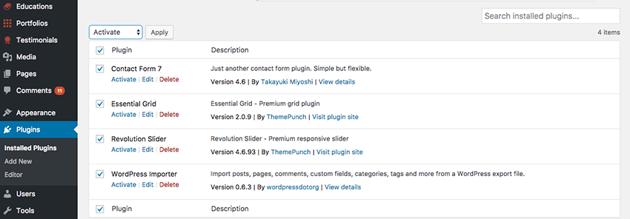 Activate WordPress resume theme plugins