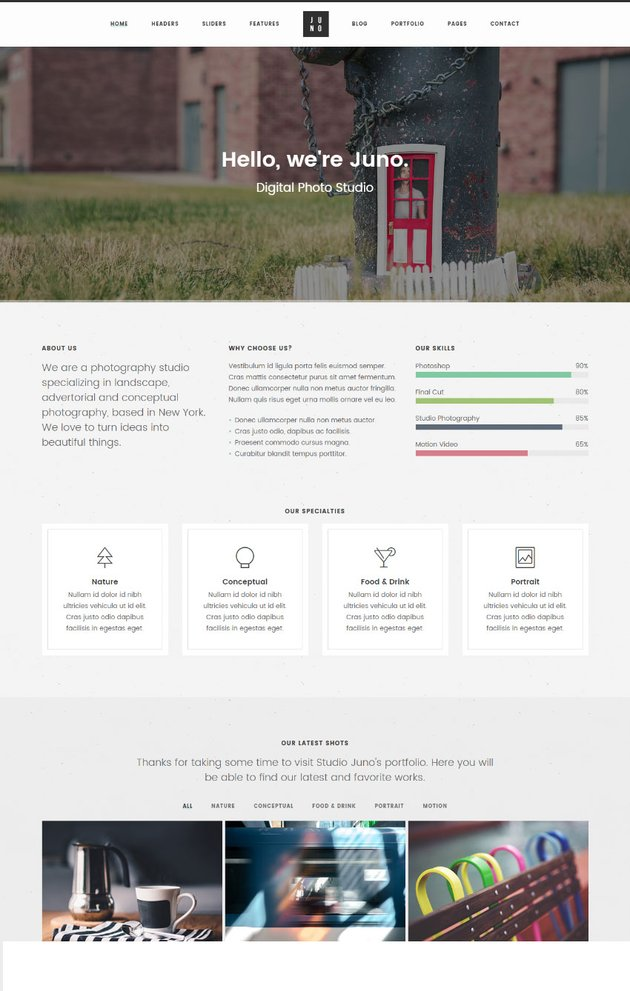Juno - Magazine and Photography One Page Website Template