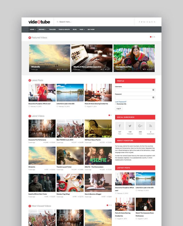 VideoTube YouTube WordPress theme