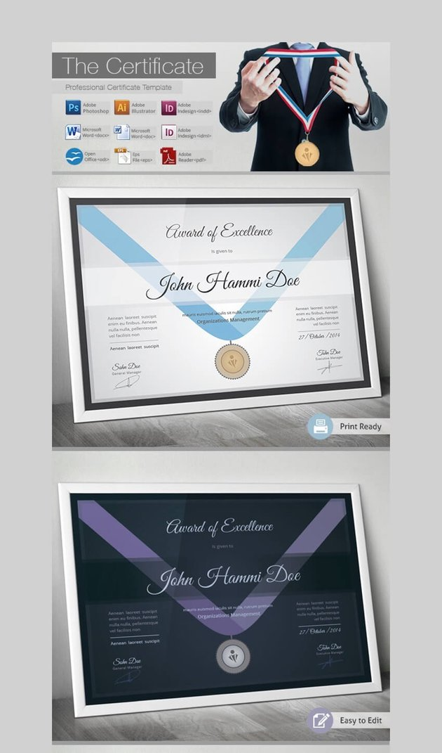 The Certificate - Award of Excellence Certificate Template for Word