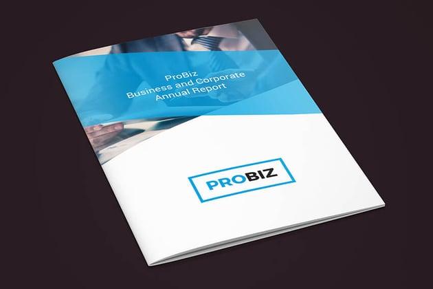 ProBiz Annual Report Template