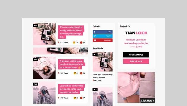 TianLock WP Membership WordPress theme