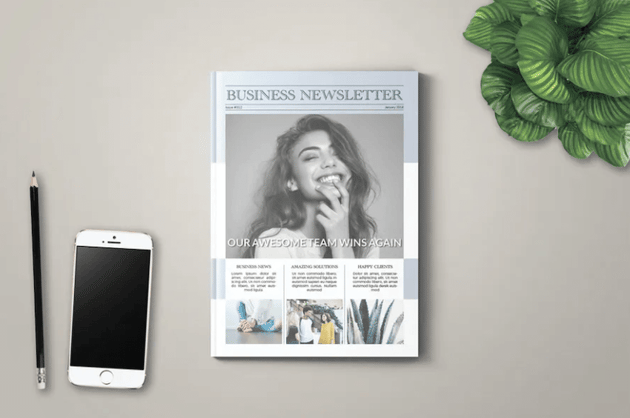 Business Newsletter template with columns
