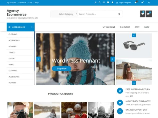 Agency eCommerce - Free WordPress Theme