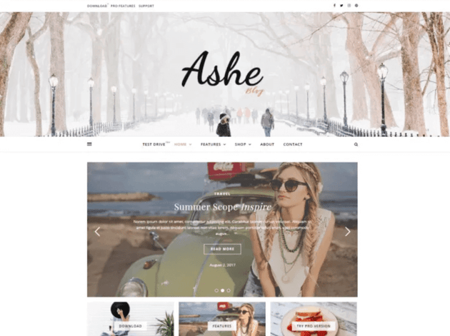 Ashe free blog WordPress theme