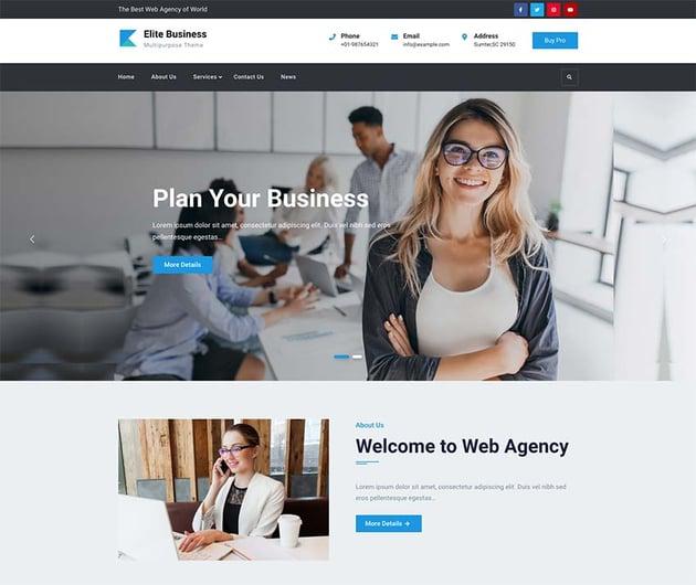 Elite Business WordPress Theme