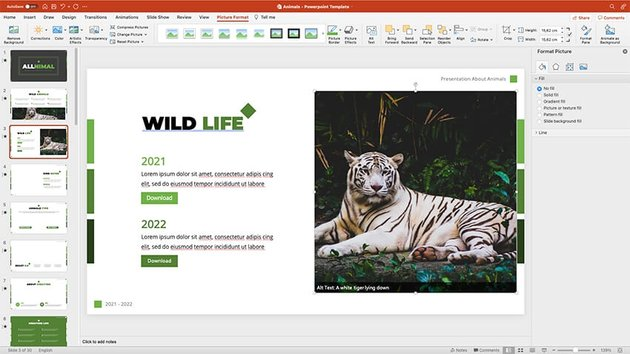 Adding images to the animal presentation