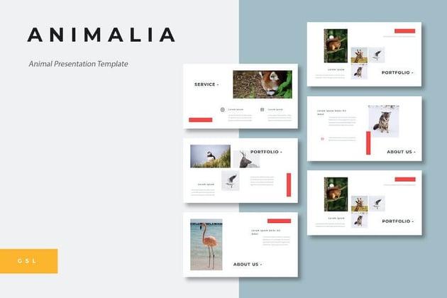 Animalia Google Slides template