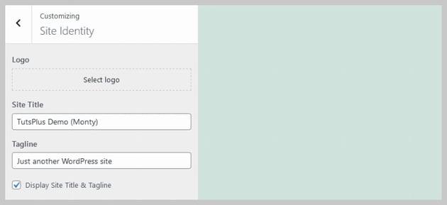 Site Identity Free Themes