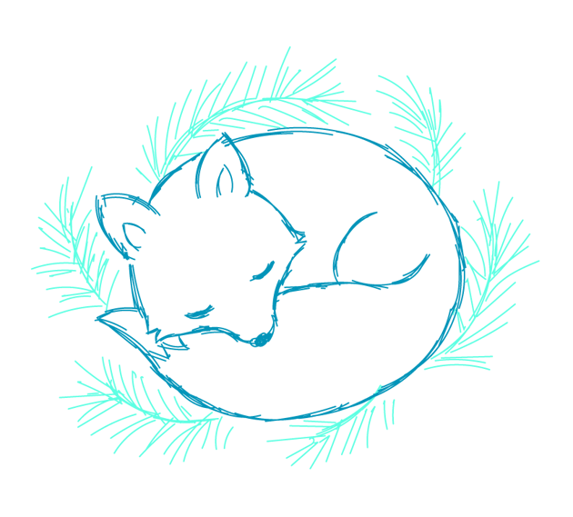 drawing the spruce branches