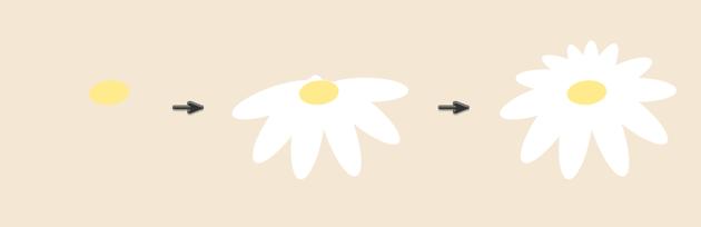 creating the third daisy