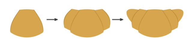 creating the croissant 5