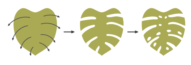 continue creating the main shape of the monstera leaf