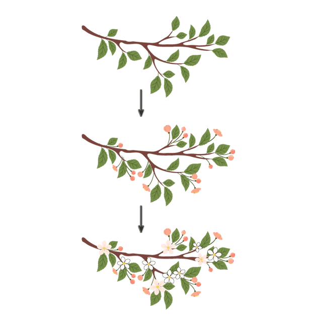 placing blossom and leaves on the branch