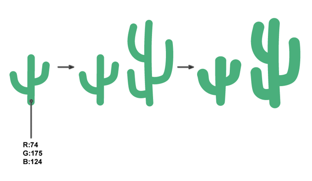 how to create the cacti