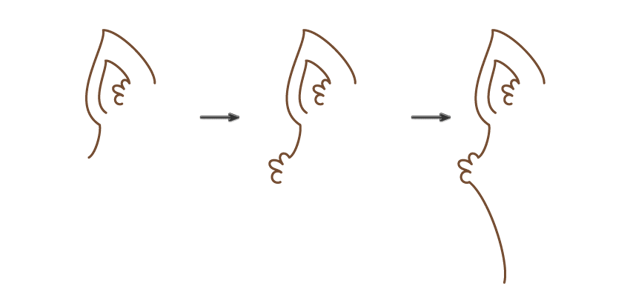 how to draw the left part of the head