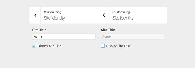 Disabled and Enabled input field in customizer