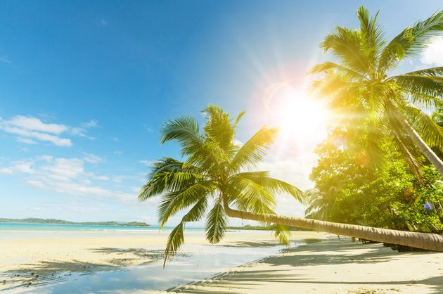 Create Sunlight Effect in Photoshop