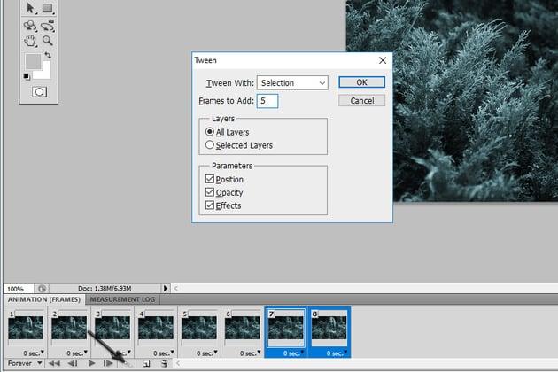Add Tween Frames