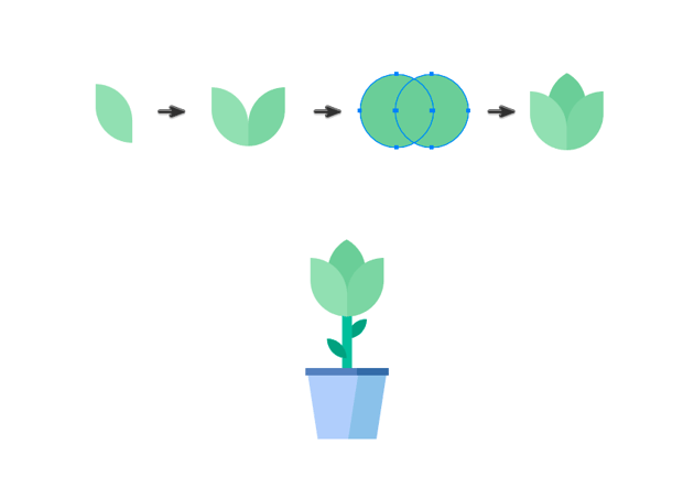 Drawing the plants leaves