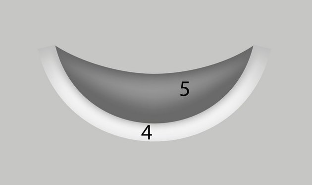 photo-realistic vector mesh