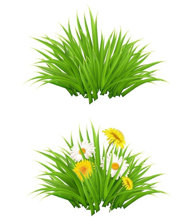grass bush with flowers vector