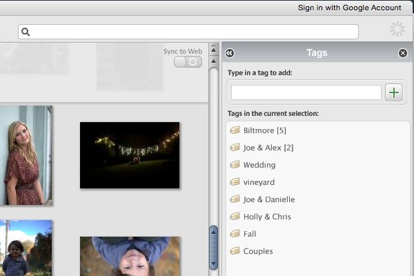 Picasa Tagging panel