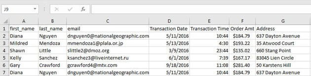 Example of Customer Data in Excel