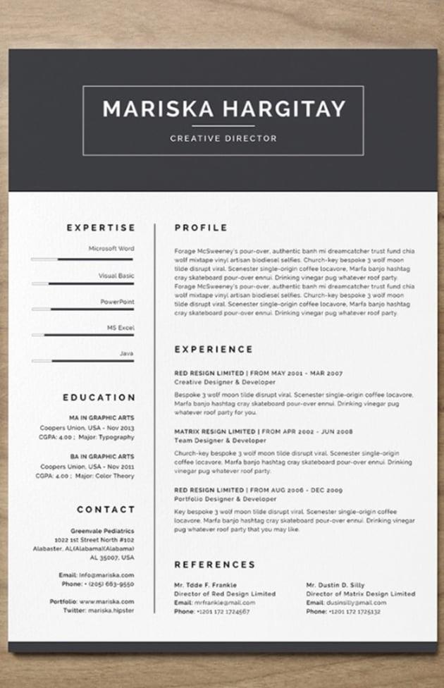 High End Free Resume CV