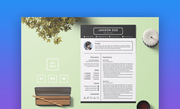 Resume Template 29