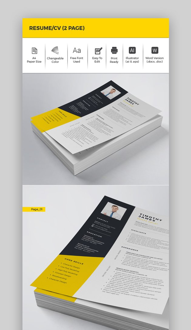Resume CV 2 Page