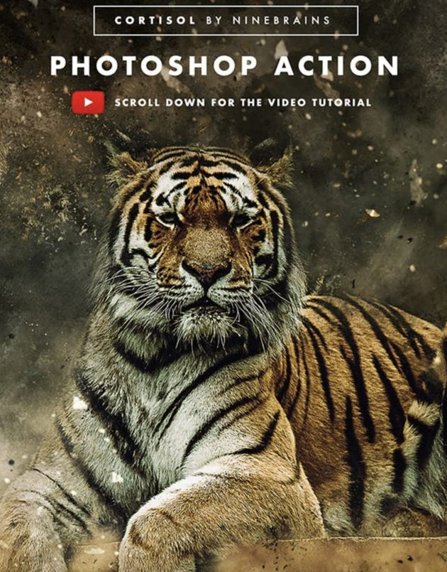 Cortisol Photoshop Action